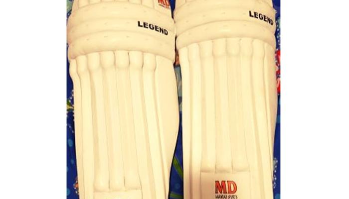 Brand New Batting Pads Thigh