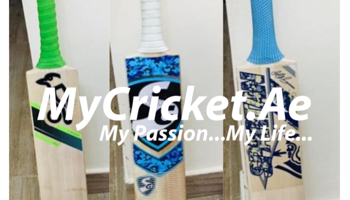 Best Quality English willow bats
