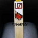 UK made cricket bat